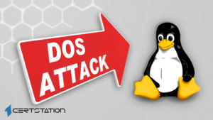 Critical Flaws in Linux Kernel Cause DoS Attack remotely