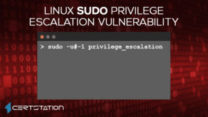 Sudo Flaw Lets Users Execute Commands as Root