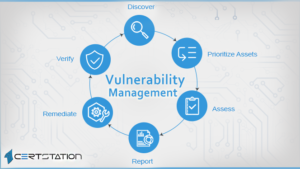 Vulnerability Management, Assessment and Its Stages