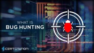 All You Need to Know About Bug Hunting