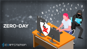 Zero-Day Vulnerability and Its Potential Impact on Organizations
