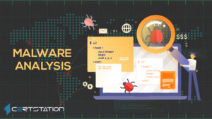A Detailed Overview of Malware Analysis